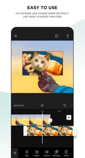 Fitur CapCut Pro Mod Apk