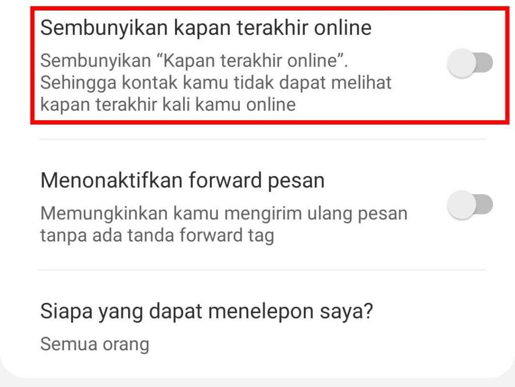 Sembunyikan Status Terakhir Online