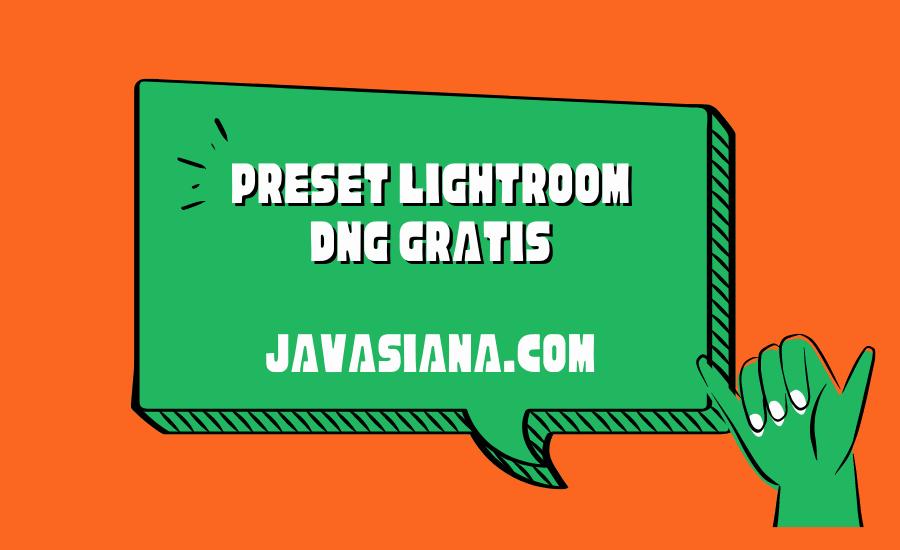 Preset Lightroom DNG