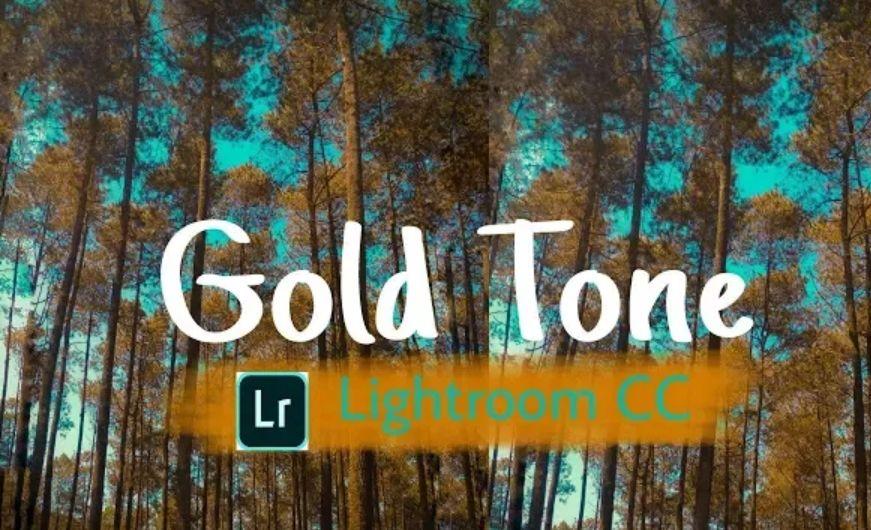 Rumus Lightroom Gold Tone